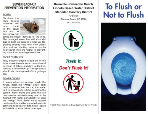 To Flush or Not To Flush